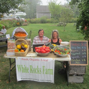 Yours truly and mate seeking riches at our farmstand in Greater Downtown Little Compton, RI, next to the art cafe last summer. If you think growing your own food is a hoot, wait 'til you start selling it to people who love you immediately for offering them delicious  sustenance.
